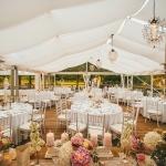 restoran-dlya-svadby-v-istrii